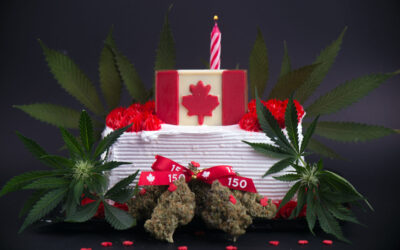 Cannabis legalization year 3—welcome to the Hunger Games